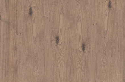 201 - Forest OAK - Living Collection 2020 by FLINT