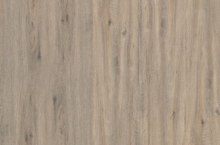 205 - Wild OAK - Living Collection 2020 by FLINT